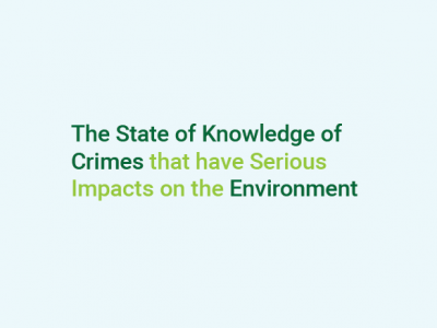 The State of Knowledge of Crimes that have Serious Impacts on the Environment
