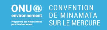 (Français) La COP2 de la Convention de Minamata sur le Mercure
