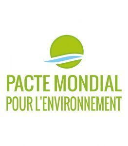 (English) Towards a Global Pact for the Environment – Civil society inputs with regard to legal considerations raised at the First Substantive Session